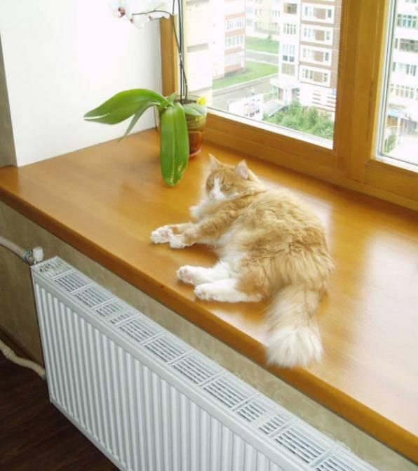 коты и отопление